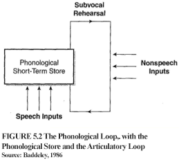 Evidence for the Phonological Loop